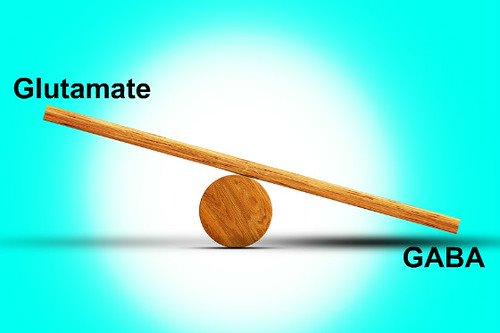 Sự mất cân bằng giữa GABA và glutamate có thể gây co giật, động kinh